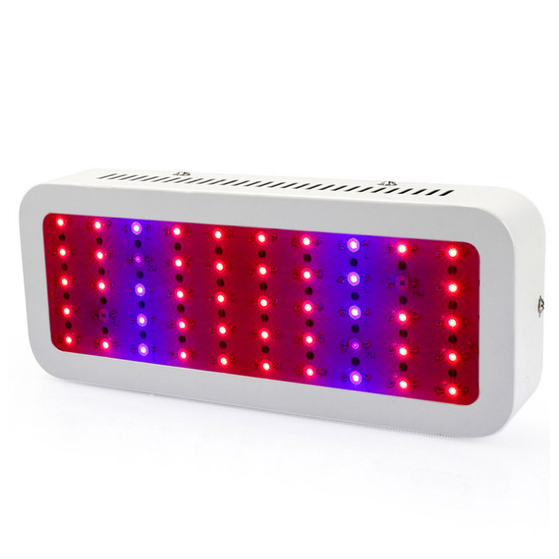 300W Red and Blue Light Full Spectrum LED Grow Lights For Greenhouse Indoor Plant and Flower Growth Lamp Ceiling Mounted