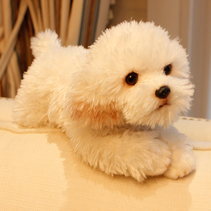 Cute Soft Animal Maltese Dog Plush Toy Quality Stuffed Lying Animals Pet Dogs Doll Baby Gift 35x12x14cm Stuffed Plush Animals Aliexpress