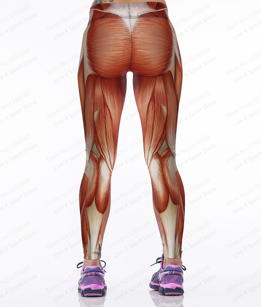 Sexy Body Women Yoga Pants Muscular Popular 3D Print Leggings Elastic High Waist Gym Female Polyester Fitness Muscle In From Sports