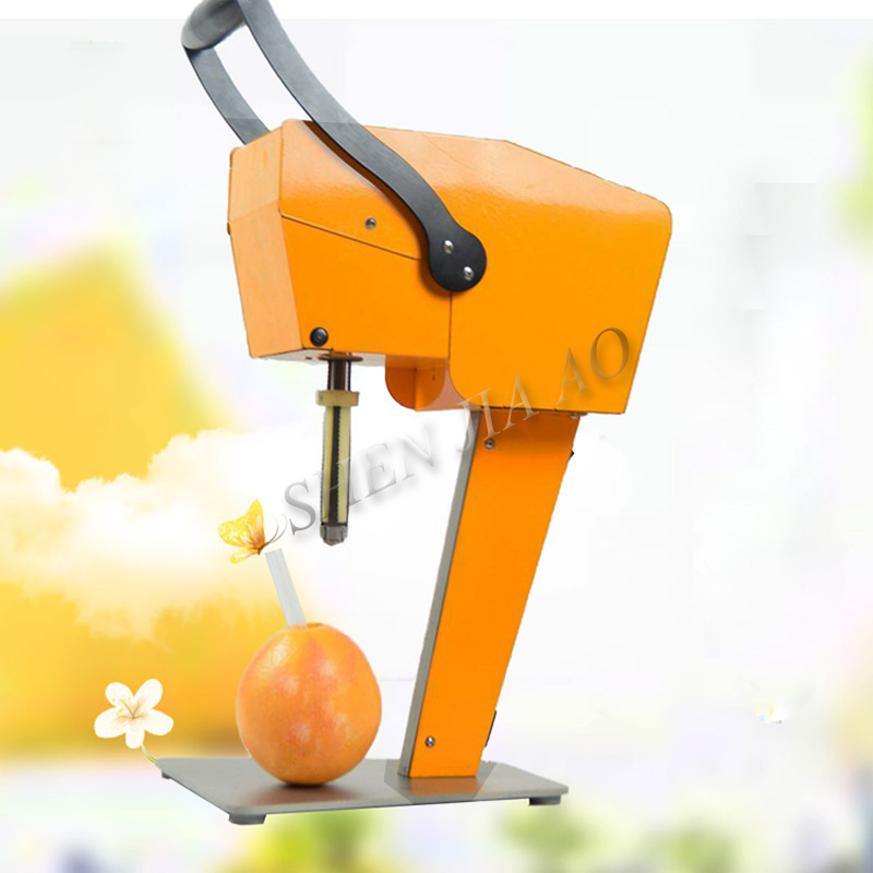 Presse-fruits frais bricolage presse-agrumes pitaya/orange presse-fruits frais sans éplucher 100% pur jus direct KK15-X1 à boire 1pc
