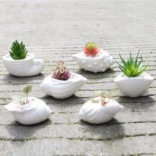 Hot Sale 6pcs/set Mini White Small Flowerpot shell Shape Ceramic Succulent Plant Pot Holder Fairy Garden Cactus Flower Pots Pl