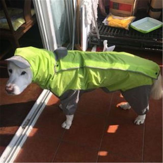 Large Dog Raincoat Jumpsuit  2