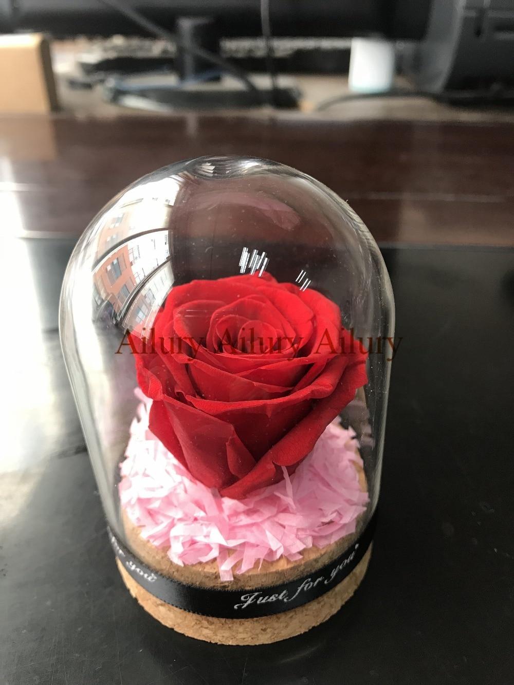 Crimson colour,Mini Everlasting Glass Cowl Recent Preserved Rose Flower.Marriage ceremony Residence Celebration Ornament,Valentine's Day present,desktop decor. glass cowl, ornamental ornamental, flower flower,Low cost glass cowl,Excessive High quality ornamental ornamental,...