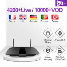 IPTV Subscription Leadcool Q1504 Box 1 Year SUBTV Arabic French IP TV Code H.265 4K TV Box Android Danish Portuguese IPTV Italy все цены
