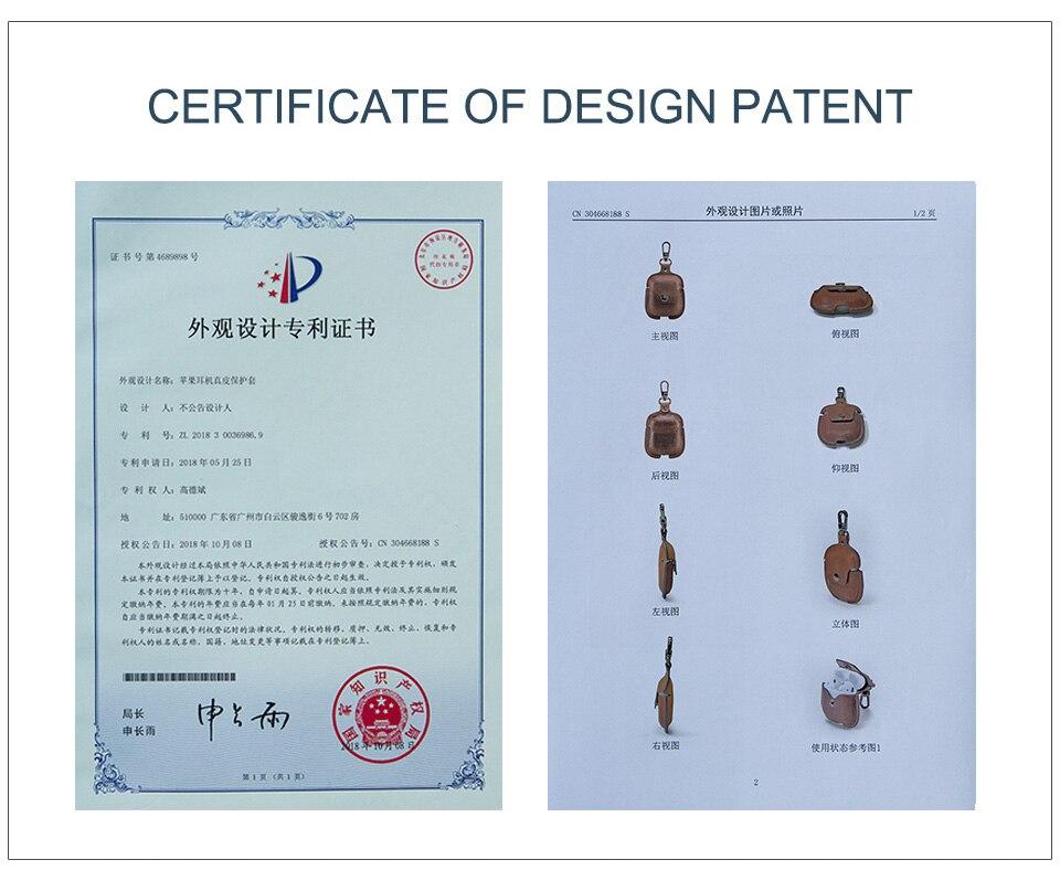 CF1100专利