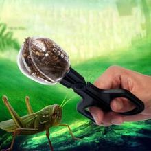 Террариум для рептилий ящериц пластиковые щипцы пинцет для кормления домашних животных