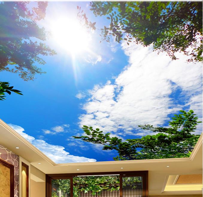 sky murals ceiling – Купить sky murals ceiling недорого из Китая