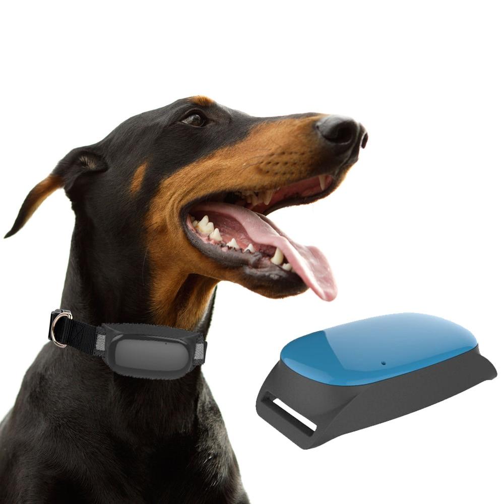 Mini Cat câine GPS Tracker cu guler Impermeabil în timp real - Electronică Auto