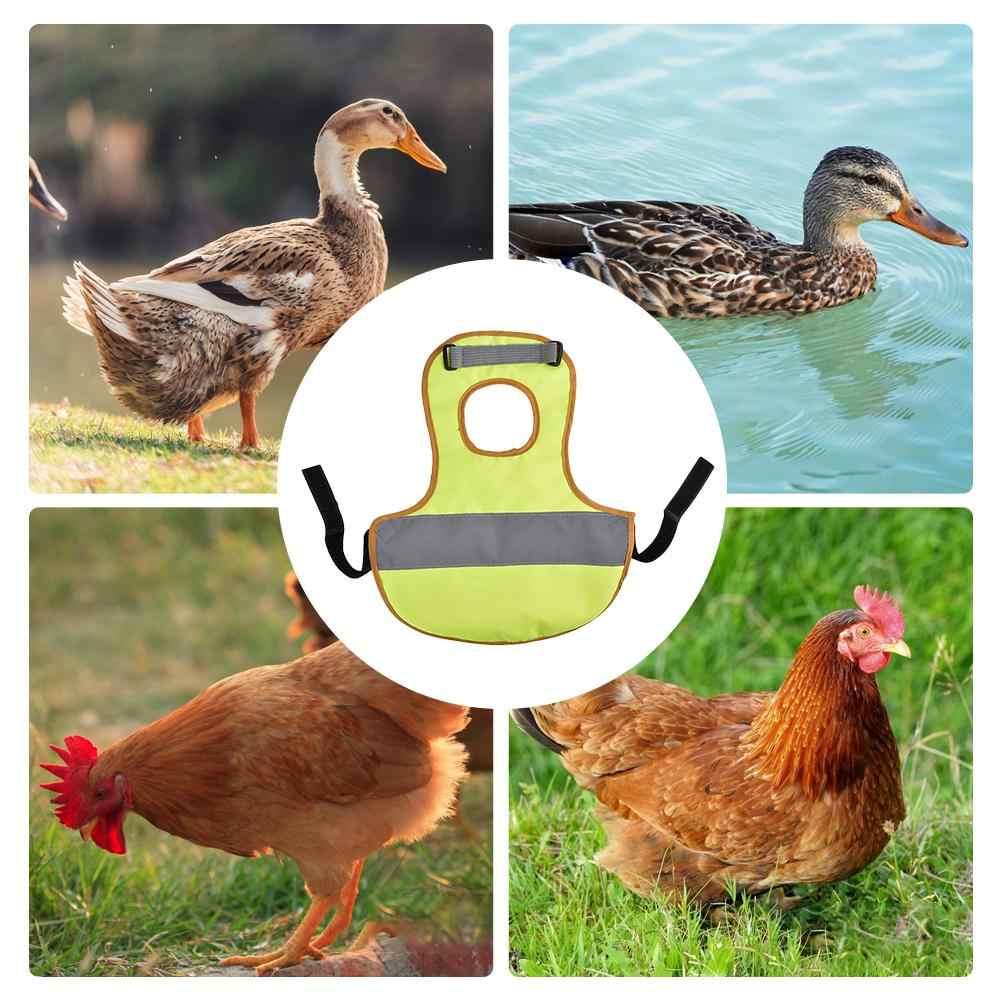 Zwierzęta domowe są kamizelka odblaskowa z kurczaka ubrania drób siodło fartuch z piór ochrony uchwyt do kurczaka i kaczki