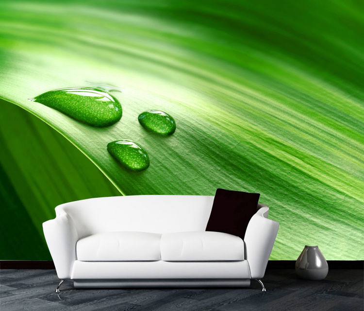 Modern art Mural Nature Wallpaper Green Leaf Dewdrop Photo wallpaper Room decor TV background Wall Bedroom Children room HomeModern art Mural Nature Wallpaper Green Leaf Dewdrop Photo wallpaper Room decor TV background Wall Bedroom Children room Home