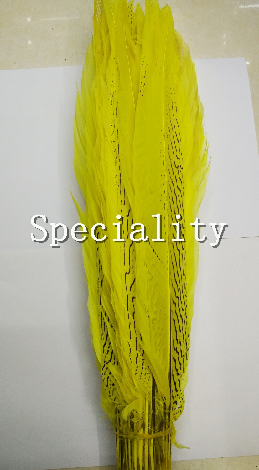 Free Shipping 50pcs Silver pheasant Feathers 40-45cm 16-18inch yellow Lady Amhersts pheasant DIY Feathers Cloth accessory