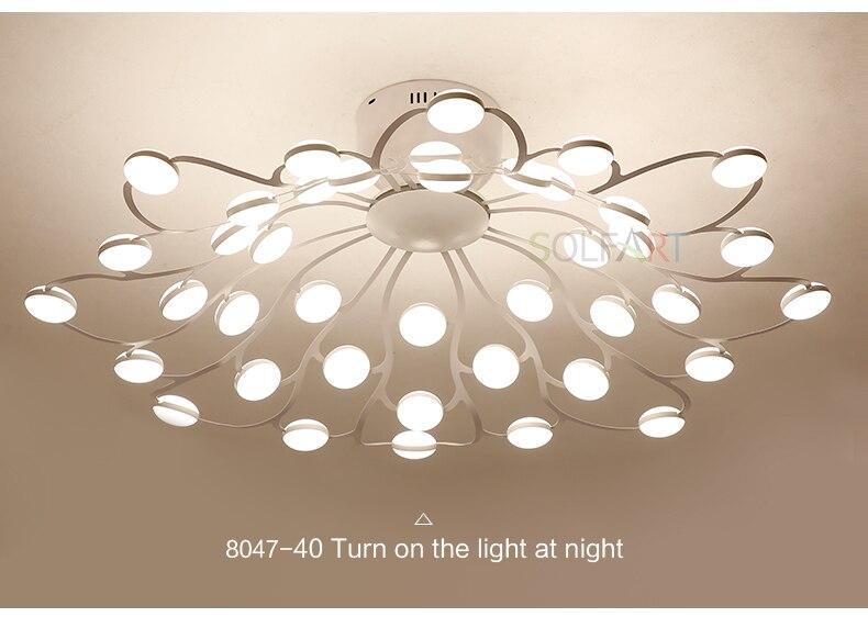 8047-LED Ceiling Light Sconce Luminaria Chandelier Ceiling Avize Light Fixtures Ceiling Lamp_09
