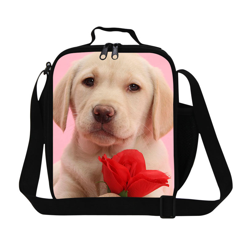 10 Hot marketing 2015 Fashion Waterproof insulated Picnic Lunch Bag Tote Print Organizer LunchBox