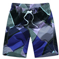 Men Swimwear Shorts Casual Beach Boradshorts Men's Print Plaid Quick Dry Beachwear Pants Brand Clothing Male Short Plage Homme