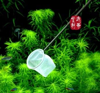 Specjalne akwarium netto czerwona pszczoła krewetki małe ryby 3D chowany ryby złapać netto biały czarny