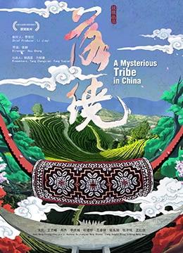 《落绕》2018年中国大陆剧情,爱情电影在线观看