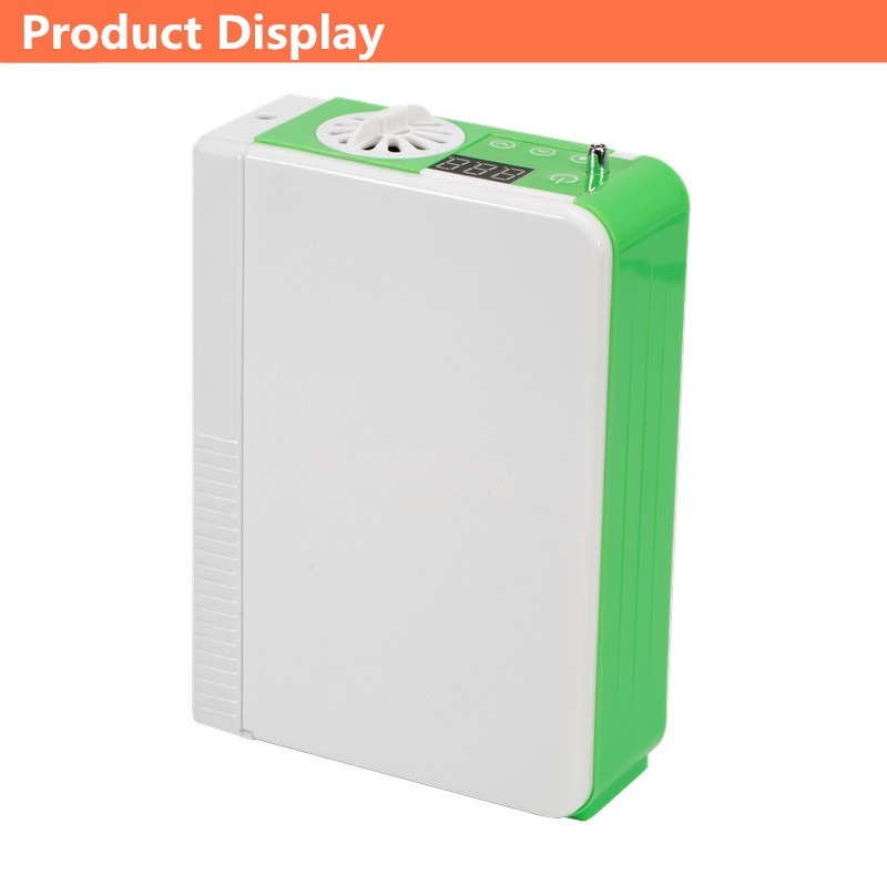 battery oxygen concentrator (9)