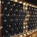 Мини звезда Чистая свет Шнура 200led 3*2 М Сетки Сказочных Огней рождество Свадьбы Декор 220 В с вилкой ЕС и Контроллер VR