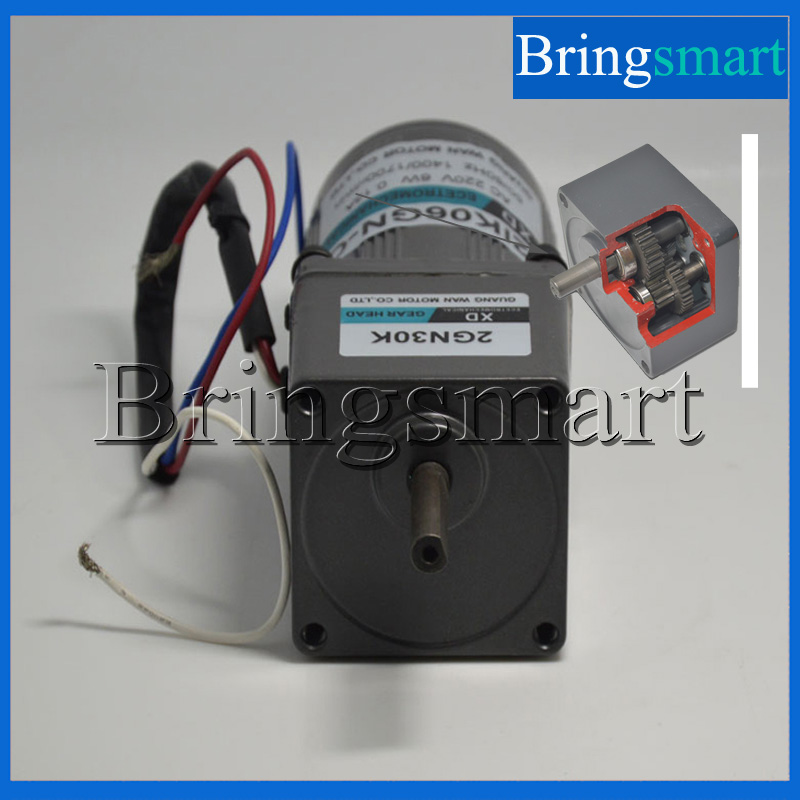 Bringsmart 220V AC Gear Motor 6W Constant Speed Single-Phase Induction Motor  Micro Motor