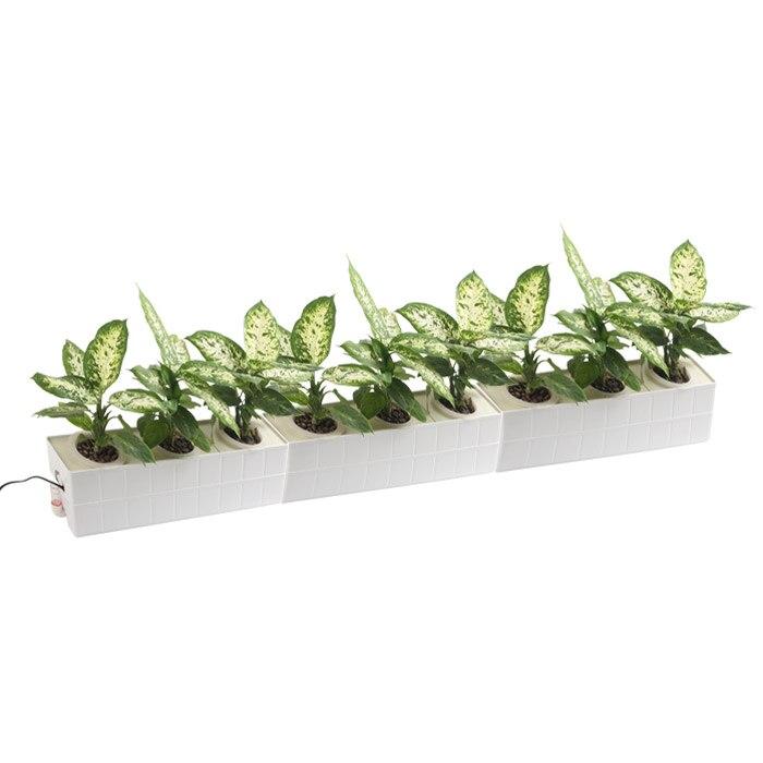 Sistema de hidroponía de tres hortalizas de bricolaje vegetales sin - Productos de jardín