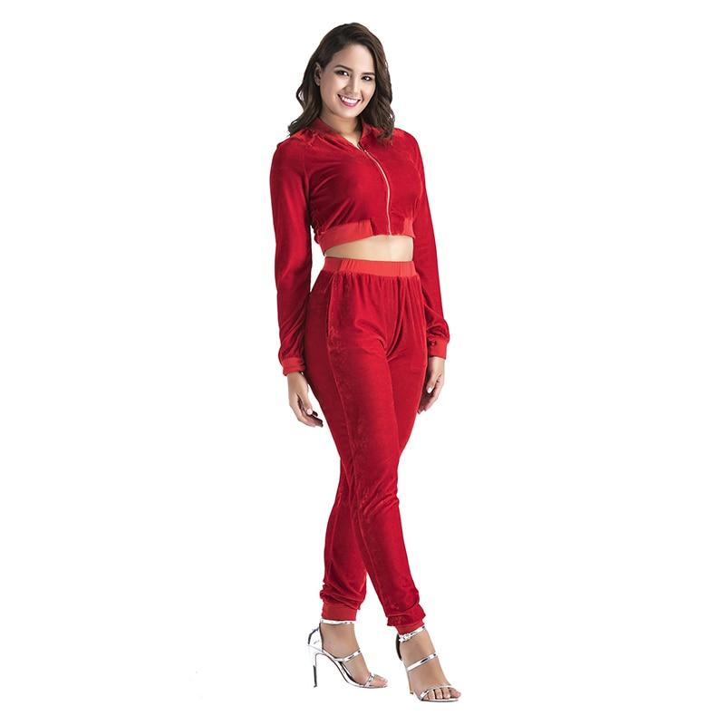 Basic Womens Sets Casual Zipper Crop Tops Hoodie Hooded Hoody Ankel Pencil Pants Track Jumper Suit Elastic Femem 2017 WS4249U