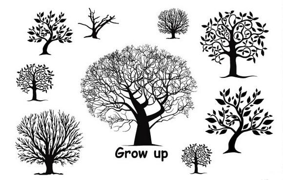 2 pcs lote 10 15 cm grow up tree design 3d grand. Black Bedroom Furniture Sets. Home Design Ideas