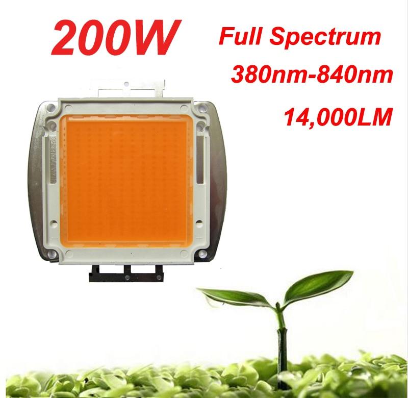 1PCS BridgeLux Square Base 200W 32-36V Full Spectrum 380nm~840nm SMD LED Grow Chip Bulb Light Lamp For Plant Grow модель машины chun base 1 32