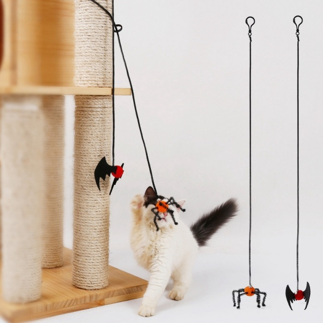 Halloween Spider And Bat Toy For Cats