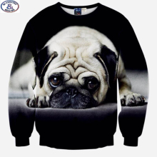 Mr.1991 brand 12-18 years big kids sweatshirt boys 3D cute Pug  printed hoodies girls teens unisex Spring Autumn thin coat W35