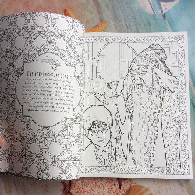 96 Pages Thick paper Harry Potter Coloring Book For Adults Children kids  secret garden Series High quality Art colouring Drawing
