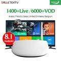 IPTV арабский французский ТВ коробка Смарт Android 8 1 4K 8GB HD WiFi Dalletektv 1 год QHDTV подписка Европа французский IPTV коробка