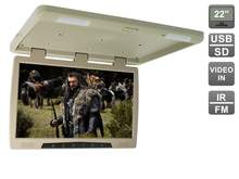 22 zoll Flip unten (dachmontage) monitor mit USB und AV-IN, AVIS Elektronik AVS2220MPP (Beige)