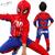 Spiderman Niños Ropa de Los Muchachos 3 unids/set coat + vest + pant ropa Del Bebé Del Muchacho Juegos de los Deportes 2-6 años Ropa Para Niños Chándales