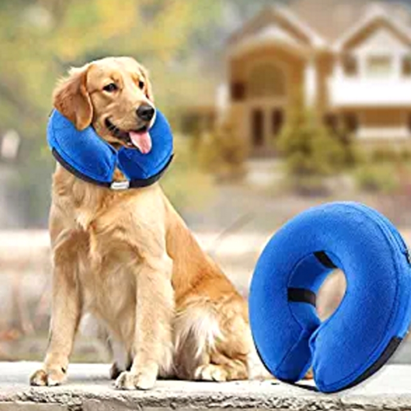 Pet Dog Cat Swimming Collar Anti Bite Safety Inflatable Neck Float Dog Puppies Protector Kitten Kitty Training Kit