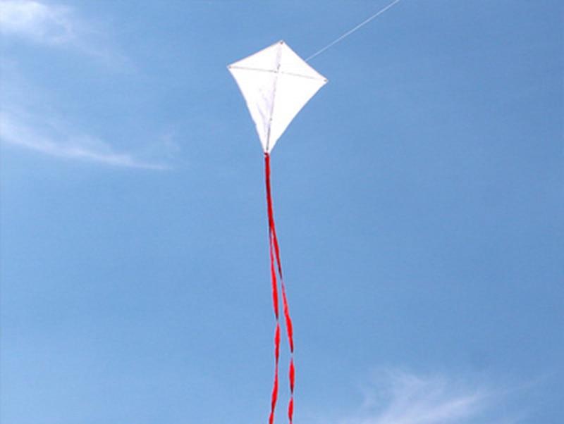 Freie Verschiffenqualitätsleere diy Kinder des Drachens 20pcs / lot, die Malendrachen mit Grifflinie im Freienspielwarenfliegenalbatros unterrichten
