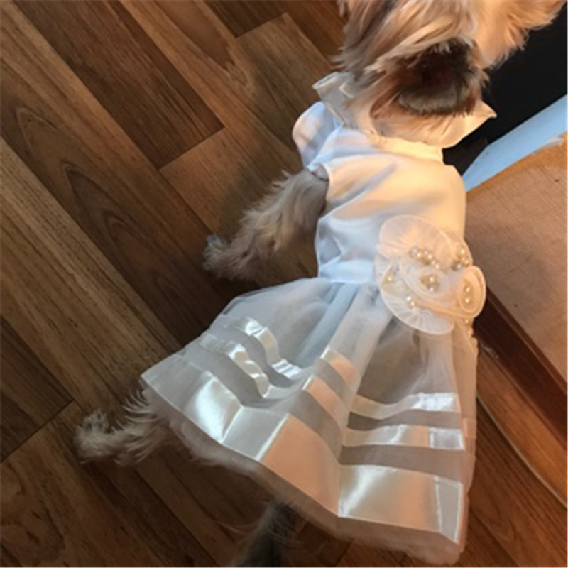 Summer Pet Dog Dress Wedding Dresses Cat Dress Skirt Puppy Clothing Spring Pet Clothes Chihuahua Yorkie Costume5