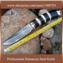 DT040 damascus steel blade knife ebony wood handle hunting knife Camping Knife best survival knife faca militar ganzo