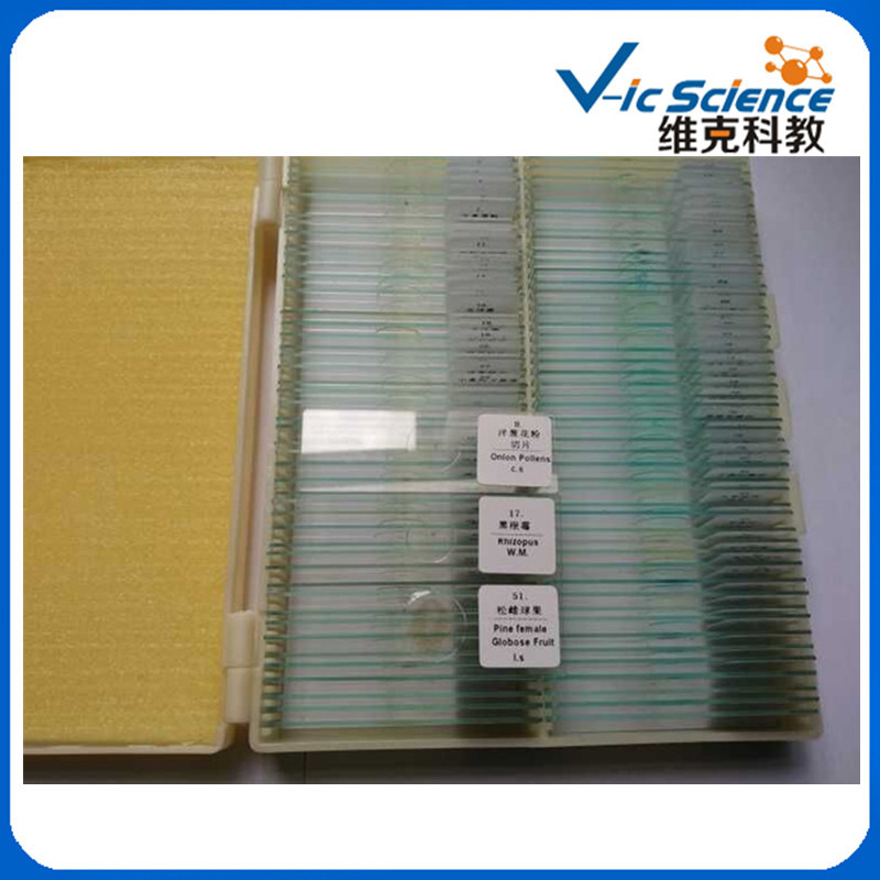 200PCS Mixed Botany&Zoology Biological Prepared Slides america market 100 pieces mixed botany zoology histology microscope prepared slides