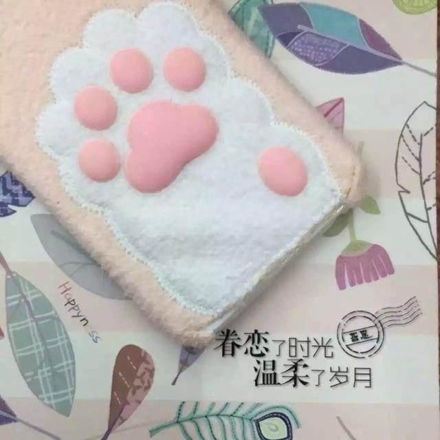 Case Iphone Cat Paw 2 kolory  6/6S  6/6S plus