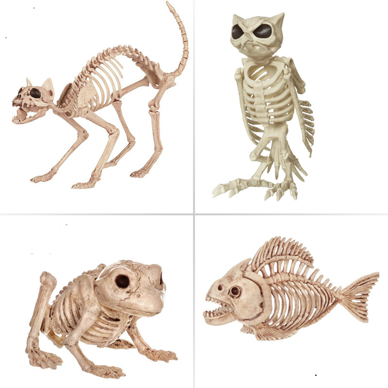Skeleton Animal 100% Plastic Animal Skeleton Bones for ...
