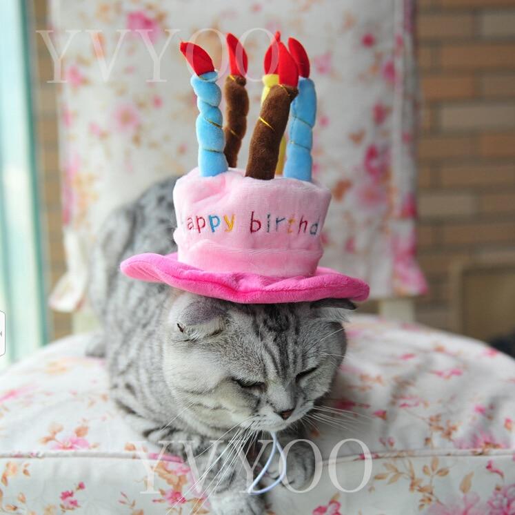 Us 314 16 Offcaps Untuk Anjing Pet Kucing Anjing Ulang Tahun Topi Topi Dengan Desain Lilin Kue Ulang Tahun Partai Kostum Headwear Aksesori Barang