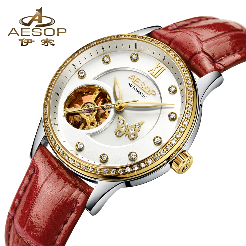 AESOP Brand Fashion Women Watch Automatic Mechanical Wristwatch Leather Ladies Clock Waterproof Relogio Feminino Montre Femme цена 2017