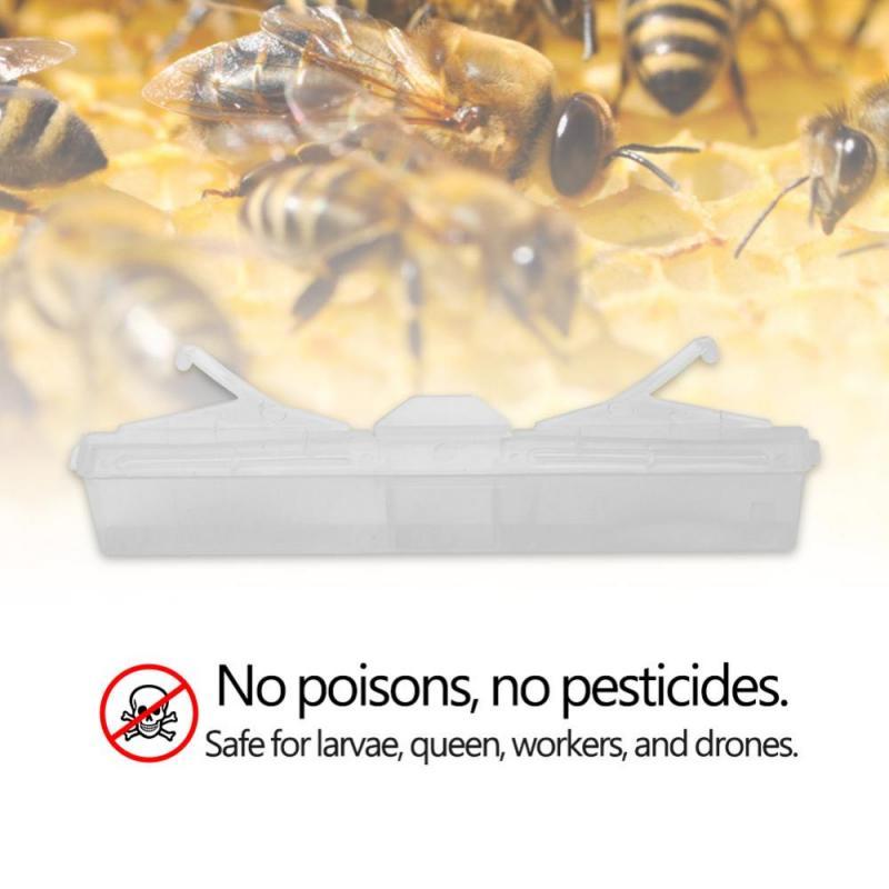 5pcs Baitable Reusable Hive Beetle Trap No Poison No Pesticides Beekeeping