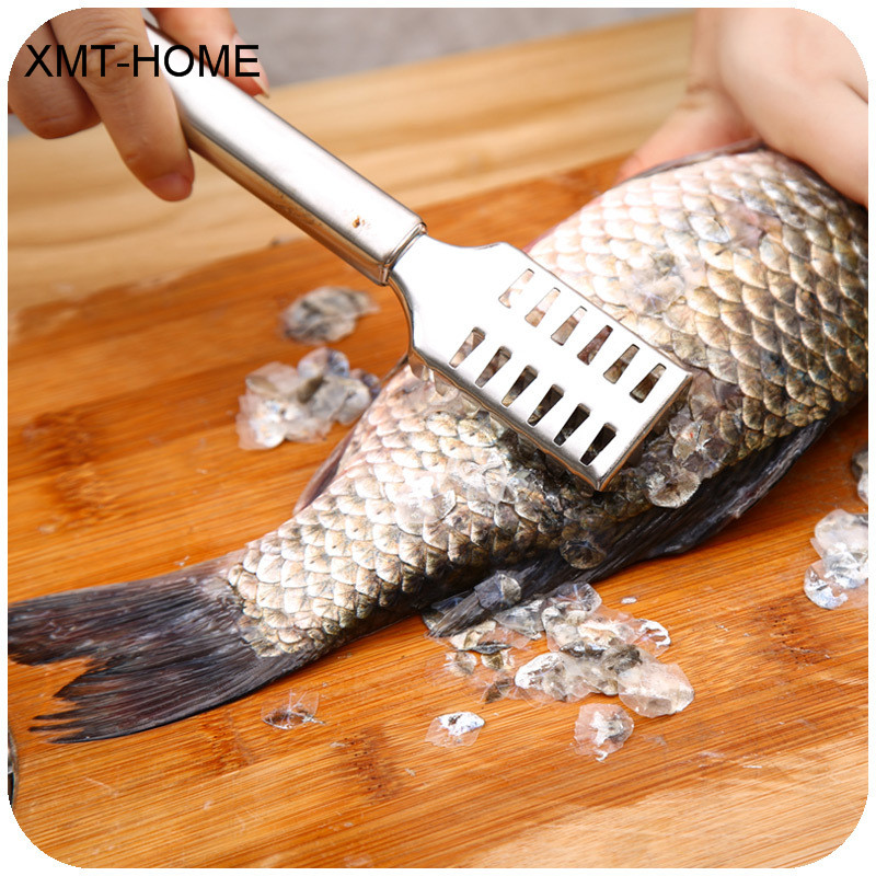 Cleaning Kitchen Utensils: XMT HOME Kitchen Tools Manual Fish Scaler Fishing Scalers