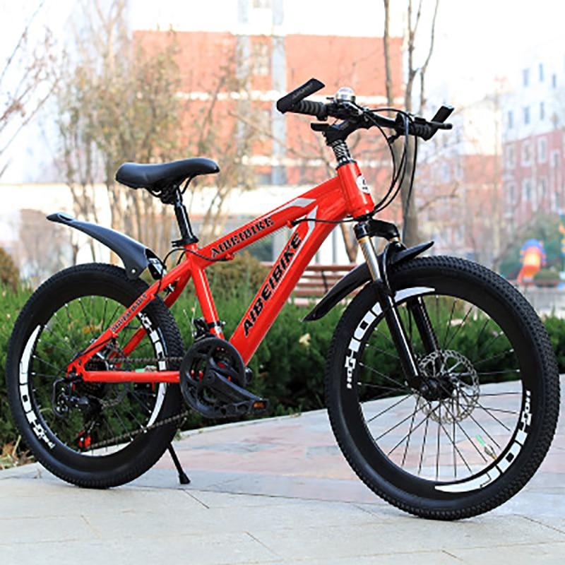 Mountain Bike Students Adult Speed Change Two-Disc Brake Shock Absorber 24-Inch Mountain Bike