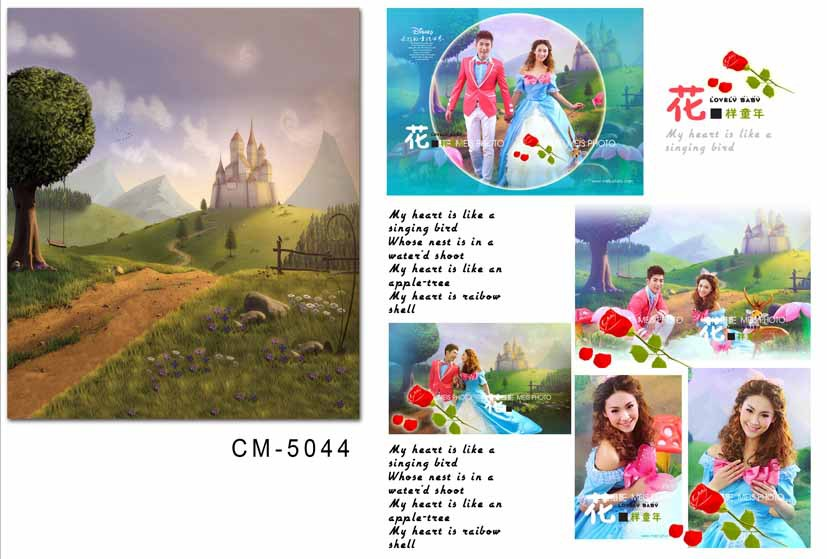 10x10ft Customized Thin vinyl photography backdrops  computer Printing Vinyl cloth castle background for photo studio cm5044 150cm 300cm new customized thin vinyl backdrops photo studio digital printing photography background for children christmas f782