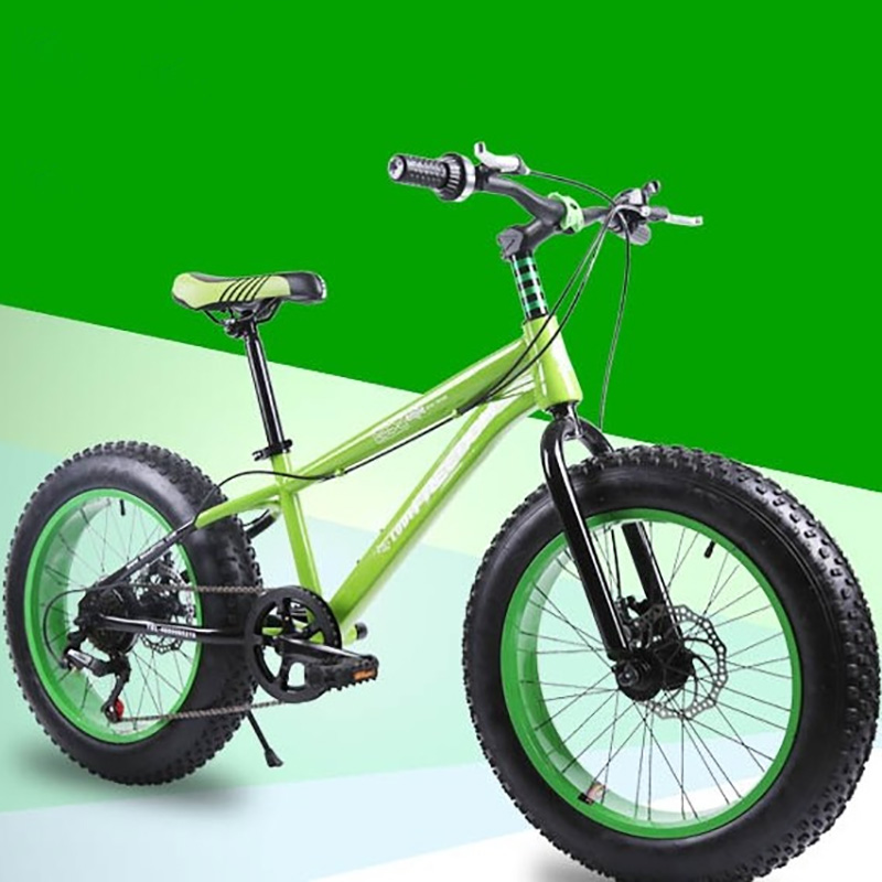 Mountain Bike High Carbon Steel Frame 20 Inches Double Disc Brake System Foldable Portable Bicycle