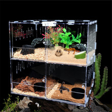 Pet Reptile Tank Acrylic Terrarium 4 Grids Insect Spiders Lizard Breeding Box Tortoise Snakes House Cage Reptiles Accessories(China)