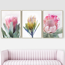 Wall Art Canvas Painting Big Pink Flower Protea Cynaroides Nordic Posters And Prints Decoration Pictures For Living Room