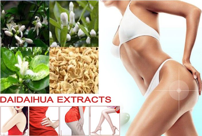 The best PRODUCT Tees DAIDAIHUA extracts herbal weight loss fat burning diet slimming TOPS original image